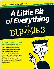 A Little Bit of Everything for Dummies yellow cover