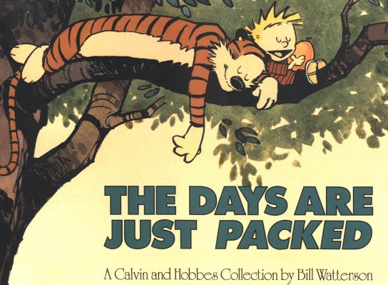 Calvin and Hobbes - the Days are Just Packed
